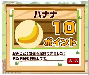 100404ECナビ野菜.jpg