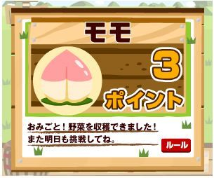 100416EC野菜畑桃.jpg