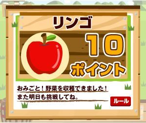 100421ECナビリンゴ.jpg