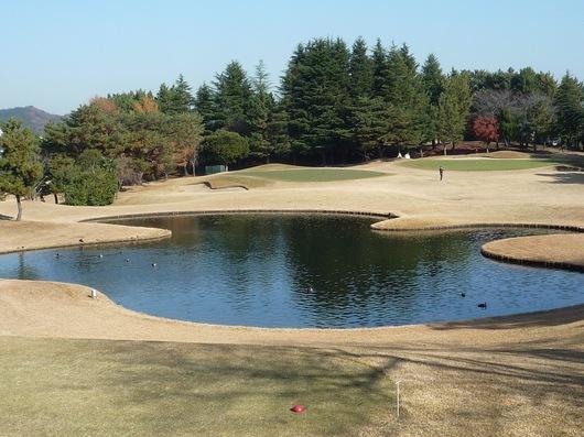 111215ゴルフ6.JPG