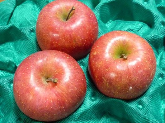 120110青森のリンゴ.JPG