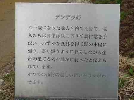283デンデラ野1.jpg
