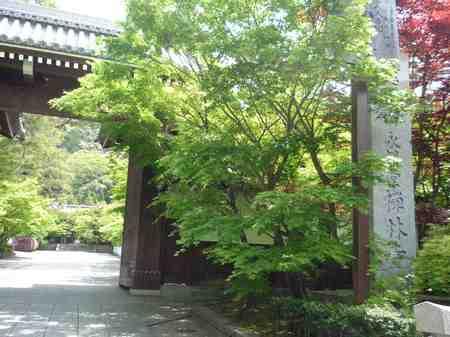 461永観寺1.jpg