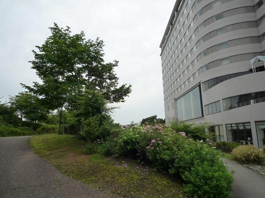 603ホテルの庭3.JPG